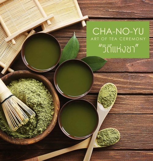 CHA-NO-YU | Art of Tea Ceremony | วิถีแห่งชา