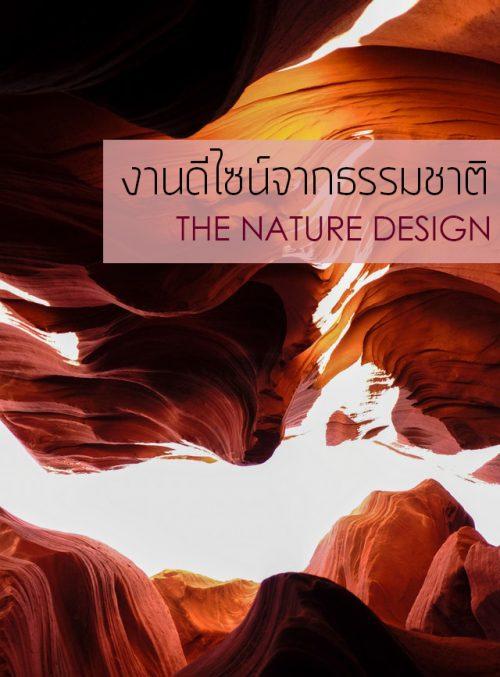 งานดีไซน์จากธรรมชาติ-the-nature-design-BANDNER