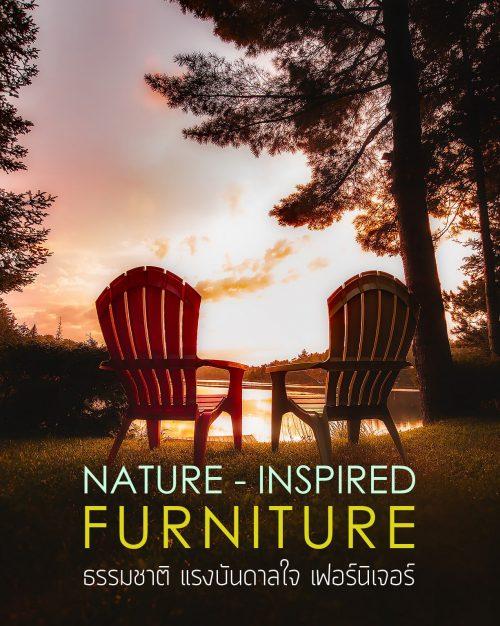 nature-inspired-furniture-bandner